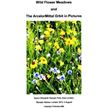 Wild Flower Meadows and The ArcelorMittal Orbit in Pictures: Volume 18 (Album Fotografici)