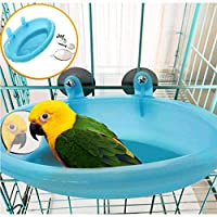 ANTOLE Parrot Bird Bathtub with Mirror Toy Parrot Food Box Peony Drinker Bowl Small Animal Grooming Bathtub Pet Cage Accessories