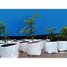 Rochfern Grow Bag LARGE,(Set of 15)100% Virgin Polyethylene, (24 x 24 x 40 Cms.) Portable .UV treated, perfect for Terrace, Balcony, Kitchen vegetables garden, Flats, or any small spaces Good looking White Outside ,Black Inside -for Best root development 15 grow bags