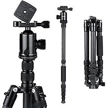 BC Master Trípode Cámara Réflex Carbono Profesional, Monopié de Viaje 2 en 1 con 360° Cabezal de Bola para Canon Nikon Sony Cámara DSLR y Videocámara, 150CM/TC543M