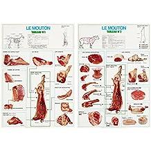 La découpe des viandes de boucherie : le mouton (2 tableaux, 56x80)