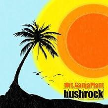 Bush Rock [Vinyl LP]
