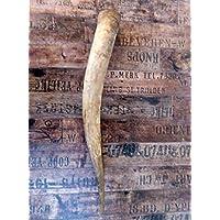 Naturhorn Watussi Longhorn, ca. 70 cm, 1,4-1,6 Liter Volumen, für Met-Wikinger-LARP- Mittelalter-Drinking Horn-Methorn, Germanenhorn, ein echtes Wikinger Geschenk