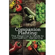 Companion Planting: The Beginner's Guide to Companion Gardening