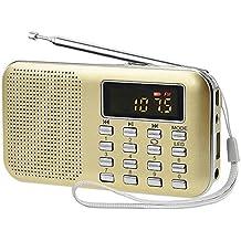 iMinker mini portátil de MP3 Radio AM / FM altavoz de medios digitales de la música del jugador de tarjeta del TF / Puerto USB con pantalla LED, la linterna de emergencia, de 3,5 mm para auriculares Jack (Oro)