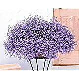 Semilla de lino azul Flor perenne de flores de semillas cuatro estaciones flor tropical de plantas ornamentales al aire libre Bonsai Semilla de lino 100 Pcs 9