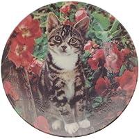 Crestley collezione Lady in attesa gattino Kapers piastra CP1927