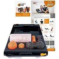 Preisvergleich für Blackroll Orange Die Faszienrolle - SMR-Set MED, inkl. Koffer, Übungs-Poster und -Booklet