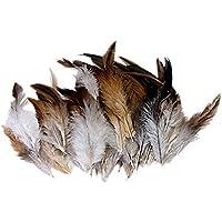 Natural Decoration Rooster Cock Feather Lot de plumes de coq pour costumes ou décoration d'intérieur