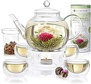 Teabloom completo Blooming Tea set: