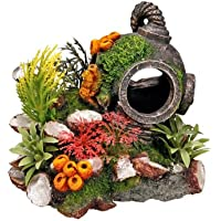 Nobby Casco con Piante Acquario Decorativo, 13.5x 11x 12cm