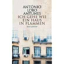 Ich gehe wie ein Haus in Flammen: Roman