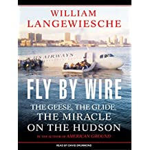 """Fly by Wire: The Geese, the Glide, the """"Miracle"""" on the Hudson"""