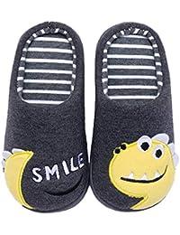 Coralup - Zapatillas infantiles para estar en casa, diseño de dinosaurios, algodón de felpa y espuma viscoelástica, 4 colores, para niños y niñas, tallas 24 a 19