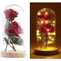 Rose Soie Artificielle Sparkle Rose Avec Abat-jour en Verre 20-LED Strip Light Grand Cadeau Pour la Saint-Valentin Fête des Mères Noël Anniversaire (Rouge)