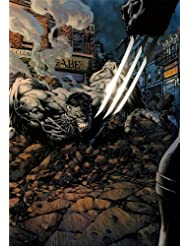Dream Colours Marvel TP00007 - Póster (70 x 100 cm), diseño de Lobezno contra Hulk II