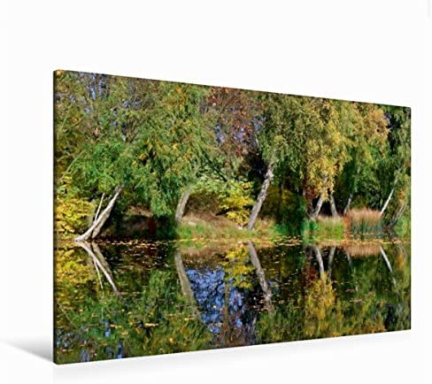 Premium Textile Toile de couleurs paysage automne 45 cm x 30 cm, 120 x 80 cm | De Qualité