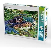 Biber mit Jungtier 1000 Teile Puzzle quer: Nagetiere und Wildtiere (CALVENDO Tiere)