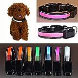Aution House USB Recargable Collar Reflectante Luces que Destellan LED Admiten la Seguridad del Perro, Impermeable, Apto para Pequeña, Mediana, Grande Mascotas / Perro (M 40-50CM, ROSADO)