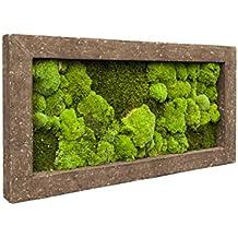 Moosbild, immergrünes Wandbild, Pflanzbild, Rahmen in Steinoptik, 100 x 50 cm, EVRGREEN