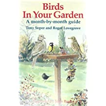 Birds in Your Garden: A Month-By-Month Guide