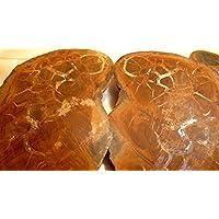 Septaria+Achate, aus Marokko, ca. 345g, mit wunderschönen Strukturen und Farben.Neu in OVP. preisvergleich bei billige-tabletten.eu