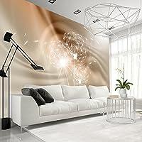 murando - Fototapete 150x105 cm - Vlies Tapete - Moderne Wanddeko - Design Tapete - Wandtapete - Wand Dekoration - Pusteblume Blumen Abstrakt Natur b-A-0281-a-d
