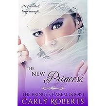 The New Princess (The Prince's Harem Book 1) (English Edition)
