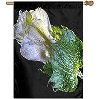 Kotdeqay Oil Painting Sunset Lavender Floral Flowers Garden Yard Flag Banner for Outside House Flower A2