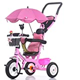 Titanio Carrello vuoto, Passeggino, Triciclo per bambini, Bicicletta, Bici per neonati (Colore : Rosa)