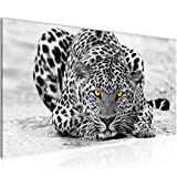 Bilder Afrika Leopard Wandbild Vlies - Leinwand Bild XXL Format Wandbilder Wohnzimmer Wohnung Deko Kunstdrucke Grau 1 Teilig -100% MADE IN GERMANY - Fertig zum Aufhängen 000312a