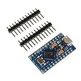 Leonardo ATmega32U4 Entwicklungsboard für Arduino (Entwicklungsboard)