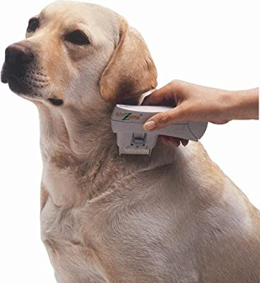 Electronic Flea Comb Zapper Epilady - Electric Flea Killer Safe for Cats, Dogs, Pets, Animals - Detects, Controls, Destroys, Kills Fleas No Toxins or Chemicals Anti-Flea Comb Battery Operated EP40120 by Epilady