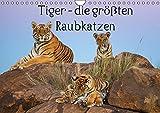 Tiger - die größten Raubkatzen (Wandkalender 2015 DIN A4 quer): Ein Kalender mit aussergewöhnlichen Tigerfotos, vom Baby bis zum stolzen Tigermann, im Wasser und im Kampf (Monatskalender, 14 Seiten)