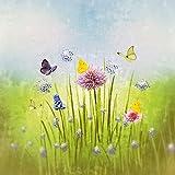 Artland Qualitätsbilder I Glasbilder Deko Glas Bilder 30 x 30 cm Botanik Blumenwiese Collage Grün D5DH Frühlingswiese
