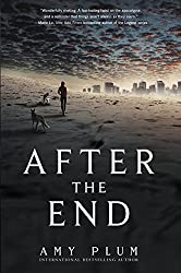 After the End by Amy Plum (2015-06-04)