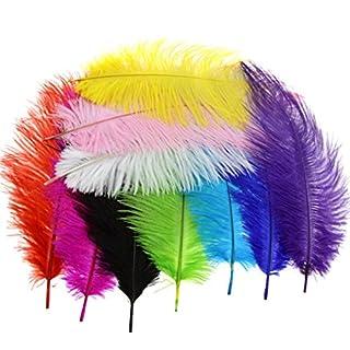 Emma 10pcs Multi Couleurs Arts Crafts Plumes autruches Fluffy 25,4- 30,5cm Long