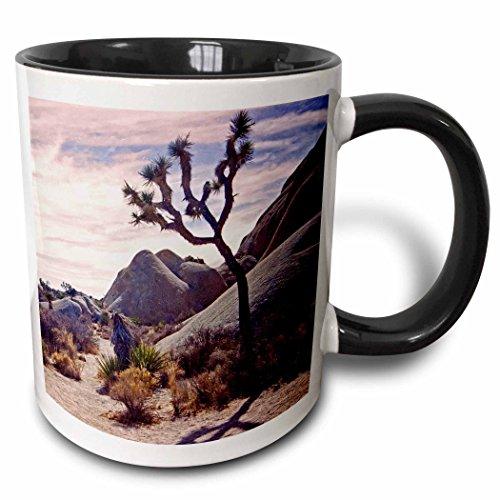 3dRose Boulder Scape und Ein Backlit Joshua Tree-Two Ton Becher, Keramik, Schwarz, 10.16cm x 7,62x-Uhr -