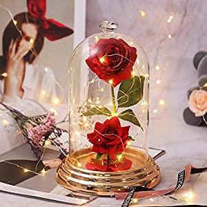 shirylzee Rosa Encantada La Bella