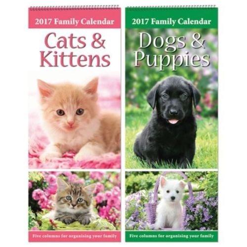 2017Grande fin spirale Famille Organiseur Planning Calendrier 5colonnes mois par page Motif Cats & Kittens