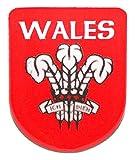 Welsh Welsh Gifts-Badge à épingle-Prince de Galles-cadeaux Motif plumes
