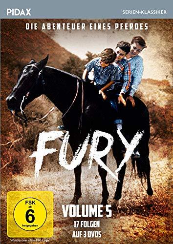 Fury - Die Abenteuer eines Pferdes, Vol. 5 / Weitere 17 Folgen der Kultserie (Pidax Serien-Klassiker) [3 DVDs]