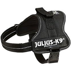 Julius-K9, 162P-M, Harnais, Taille: M, Noir