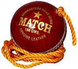 #9: PSE Unisex Red Leather Practice Hanging Cricket Ball