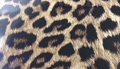 Preisvergleich Produktbild 3D Leopard Folie Hochglanz mit Luftkanälen ,Car Wrapping, Leopardenfell 6m x 1,52m