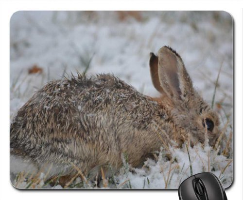 Snow Bunny Mouse Pad, Mousepad (Rodents Mouse Pad)