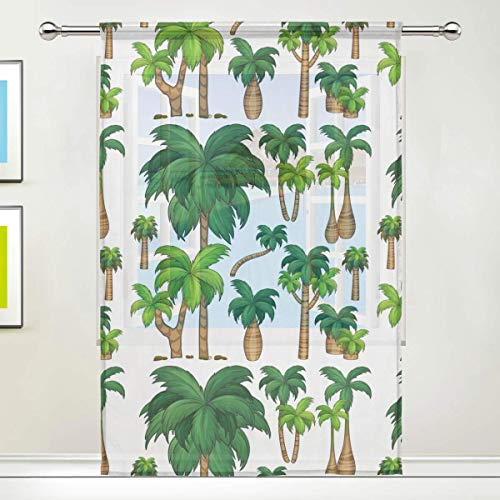 rodde Drape 55x78 Inch 1 Panel Tropical Palm Trees Sheer Voile Door Window Room Curtain Polyester Easy Upkeep -