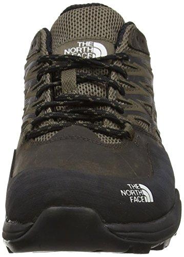 The North Face Hedgehog Hike Gtx, Chaussures de Randonnée à Tige Basse Homme Marron - Brown (Weimaraner Brown/TNF Black)