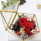 Somedays Geometrische Schmuck Box transparent Glas Blume Zimmer Glas Box Ring Box Ehering Schmuck Box