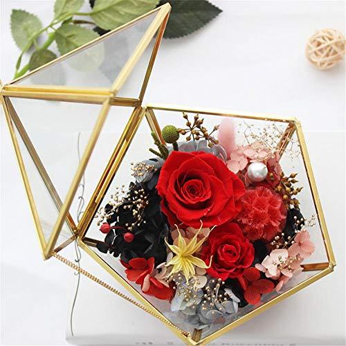 Geometrisches Glas Terrarium Box Schmuckschatulle Glas Sukkulente Pflanzgefäß Deko Multifunktional Glas Blumen Topf Tischplatten Pflanzer -